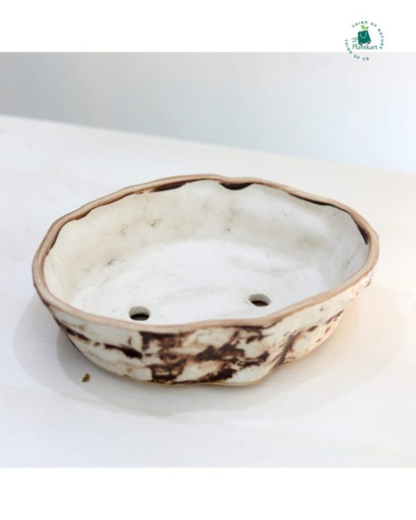 Bonsai Tray Pot Brown
